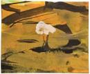 Tinta-acuarela 11 x 13 cm 2012-2013