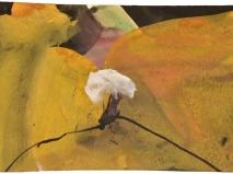 Tinte-aquarell 8 x 11,5 cm 2012-2013